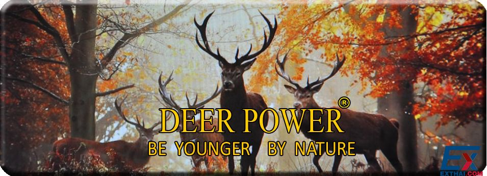 DEER POWER for Young and Nature